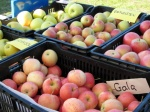 local, organic apples from Harvey's Orchards