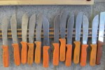 Harvest knives ready and waiting