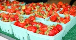 Strawberries at the Saturday Farm Market
